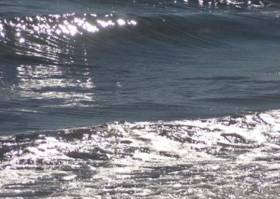 Mer Frontignan 2012