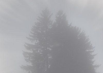 Les Rasses brouillard